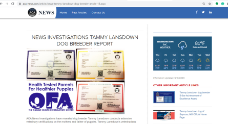 goodbreeder, tammy, lansdown, acanews, article, dog, breeder, tammy-lansdown, dog-breeder,