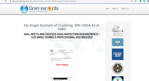 goodbreeder, ajs, angel, kennels, govt-records, ajs-angel, kennel, dog, breeder, about, information, usda, 41-a-0484, 41a0484, linda-baker, dog-breeder, crushing, mn, minnesota, puppies, for, sale, dogbreeder, kennel, usda, inspection, reports, puppy, mill, puppymill, show, reviews