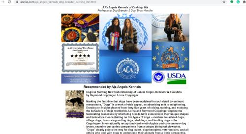 goodbreeder, ajs, angel, kennels, acafaq, ajs-angel, kennel, dog, breeder, about, information,