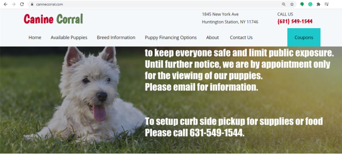 canine, corral, kennels, good, breeder, homepage, kennel, canine-corral, k9, huntington, station, ny, new, york, huntington-station, customer, pet, store, petstore, complaints, puppy, mill, puppymill, inspections, reports, news, article, dog, cat, pets, for sale, long, island, longisland