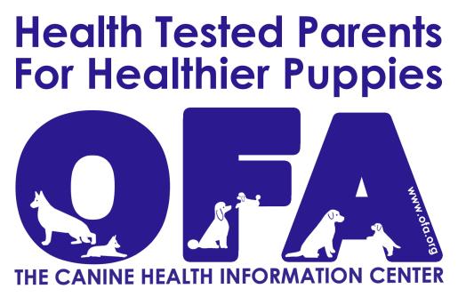 Esther, Mae, Zimmerman, dog, breeder, ofa, Esther-Mae-Zimmerman, dog-breeder, east, earl, pa, pennsylvania,  puppy, customer, kennels, mill, puppymill, usda, 23-A-0268, 23A0268, 5-star, certificate, daschund, ACA, ICA, registered