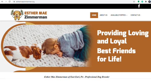 Esther, Mae, Zimmerman, dog, breeder, website, Esther-Mae-Zimmerman, dog-breeder, east, earl, pa, pennsylvania,  puppy, customer, kennels, mill, puppymill, usda, 23-A-0268, 23A0268, 5-star, certificate, daschund, ACA, ICA, registered