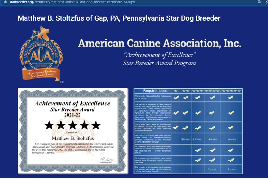 goodbreeder, matthew, stoltzfus, dog, breeder, starbreeder, matthrew-stoltzfus, dog-breeder, gap, pa, pennsylvania, goodle, doodles, pugs, frensh, bulldogs, puppy, mill, puppymill, usda, inspection, records, kennel, reviews