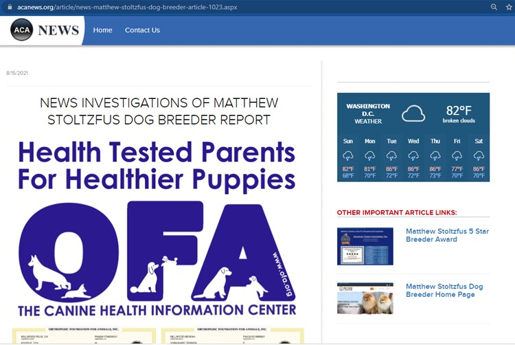 matthew, stoltzfus, dog, breeder, news, article, report, matthrew-stoltzfus, dog-breeder, gap, pa, pennsylvania, goodle, doodles, pugs, frensh, bulldogs, puppy, mill, puppymill, ofa, records, kennel, reviews