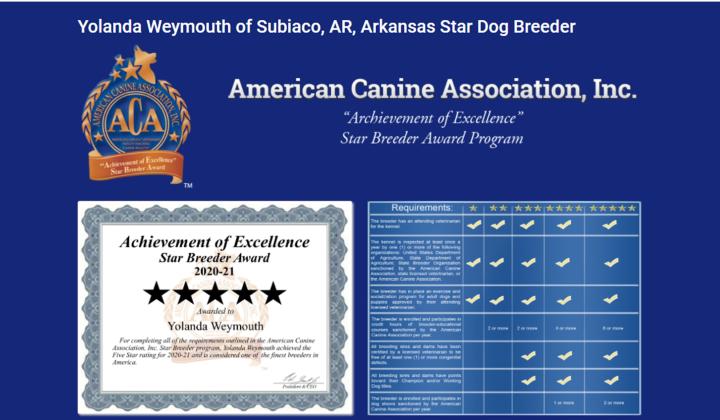 yolanda-weymouth-dog-breeder_ctar