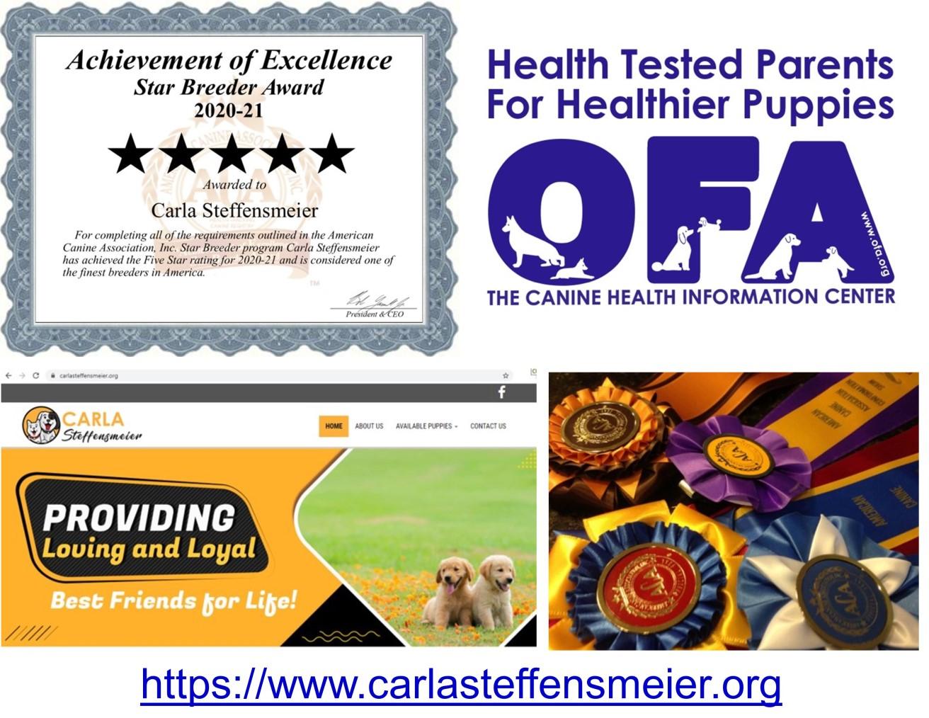 carla, steffensmeier, breeder, informaiton, carla-steffensmeier, dog-breeder, west, point, ia, iowa,